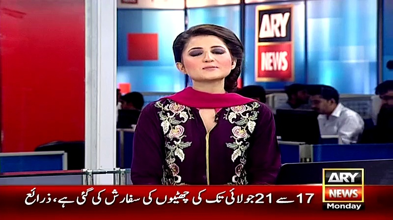 DJ Butt rejects Pervez Rasheed's sympathy