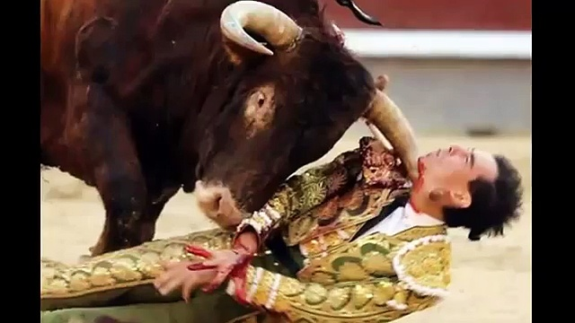 Matador gruesomely injured at Bullfight