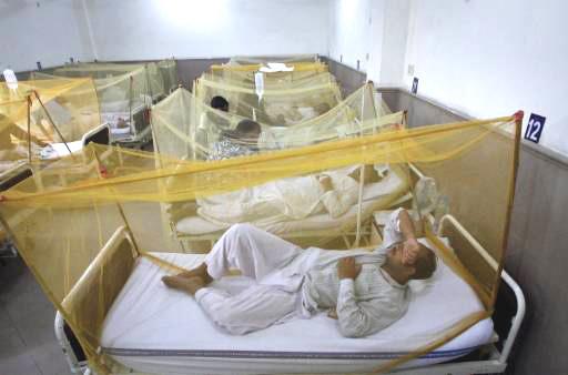 36-year old dies of dengue fever in Karachi