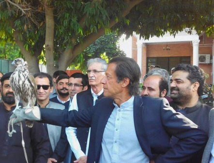 Imran Khan sets Falcon free