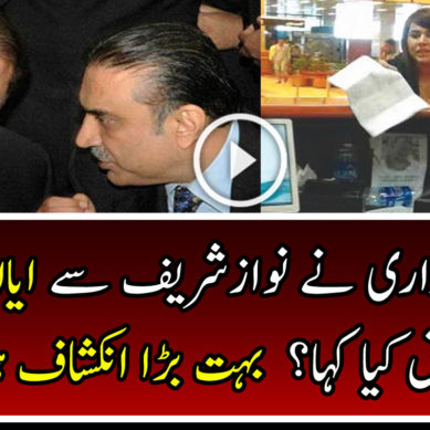 Video Revealed What Asif Zardari Told To Nawaz Sharif About Ayyan Ali