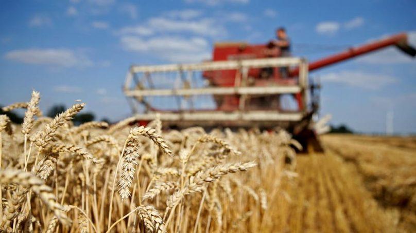 Pakistan runs out of wheat, three week's stocks remaining