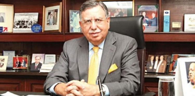 Shaukat Tarin calls the IMF program very harsh