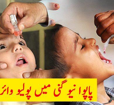 polio 389x360