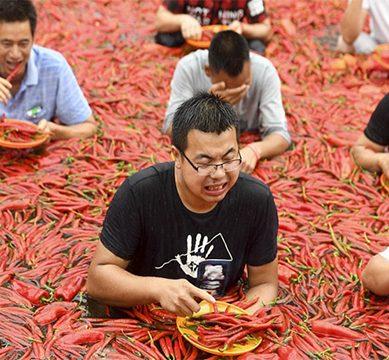 چینی باشندہ نے چینی نہیں مرچیں چبا ڈالیں