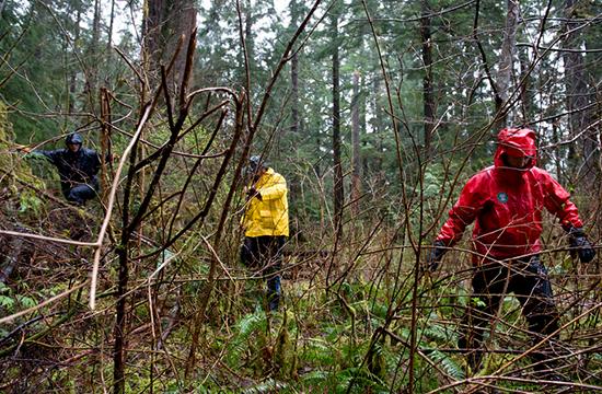 پانچ ماہ کا بچہ جنگل میں رات بھرزندہ بچ رہنے میں کامیاب