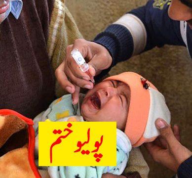 polio1 389x360