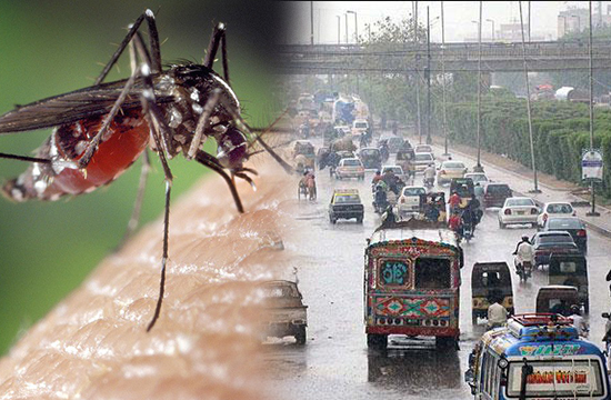 سندھ میں ڈینگی کا وار متاثرہ افراد کی تعداد 15 ہزار سے بھی زیادہ