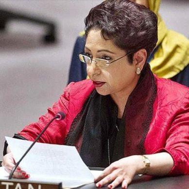 کشمیر میں ریاستی دہشگردی پر توجہ کیلئے ملیحہ لودھی کی عالمی برادری سے اپیل