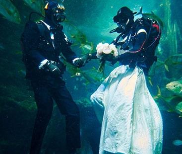 شادی کی تصاویر کھنچاوانے کا انوکھا انداز