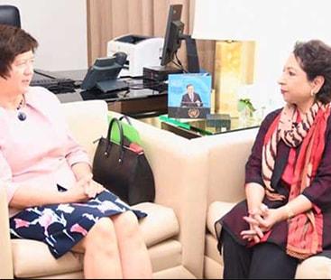 ملیحہ لودھی کی سلامتی کونسل کی صدر سے ملاقات