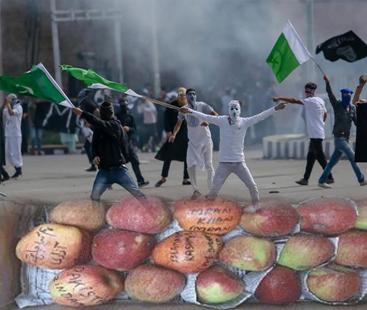 کشمیریوں کا بھارت کیخلاف احتجاج لیکن طریقہ انوکھا
