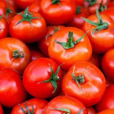 ٹماٹر کی گرتی ہوتی ہوئی قیمت کو پھر پَر لگ گئے