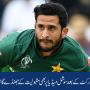 حسن علی نے کرکٹ کے بعد سوشل میڈیا پر بھی مقبولیت کے جھنڈے گاڑ دیئے