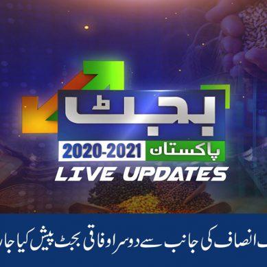 پاکستان تحریکِ انصاف کی جانب سے دوسرا بجٹ پیش کیا جارہا ہے