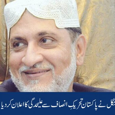 اختر مینگل نے پاکستان تحریکِ انصاف سے علیحدگی کا اعلان کردیا
