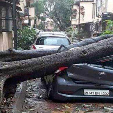 بھارتی شہر ممبئی سمندری طوفان کی زد سے بچ گیا