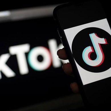 بھارت میں ٹک ٹاک سمیت 59 چینی موبائل ایپلیکیشن پر پابندی عائد