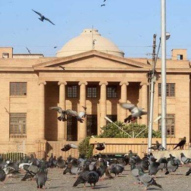 حالیہ بارشوں کی تباہ کاریوں کی گونج عدالتوں میں پہنچ گئی