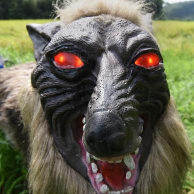 ریچھوں کو بھاگانے کیلئے روبوٹک بھیڑیئے میدان میں اترنے کا تیار