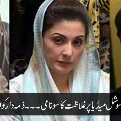 پاکستانی سوشل میڈیا پر غلاظت کا سونامی۔۔۔ذمہ دار کون؟؟؟