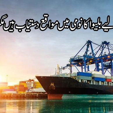 پاکستان کے لیے بلیو اکانومی میں مواقع دستیاب ہیں مگر؟؟؟