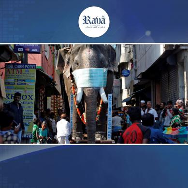 بھارت میں کورونا کے ریکارڈ کیسز کا سلسلہ تھم نہ سکا