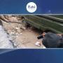 کراچی: آوارہ کتے نے خاتون ڈاکٹر پر حملہ کردیا ۔۔