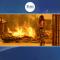 ترکی کے جنگلات میں آتشزدگی، 3 افراد ہلاک، 100 زخمی