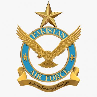 paf official logo 389x389