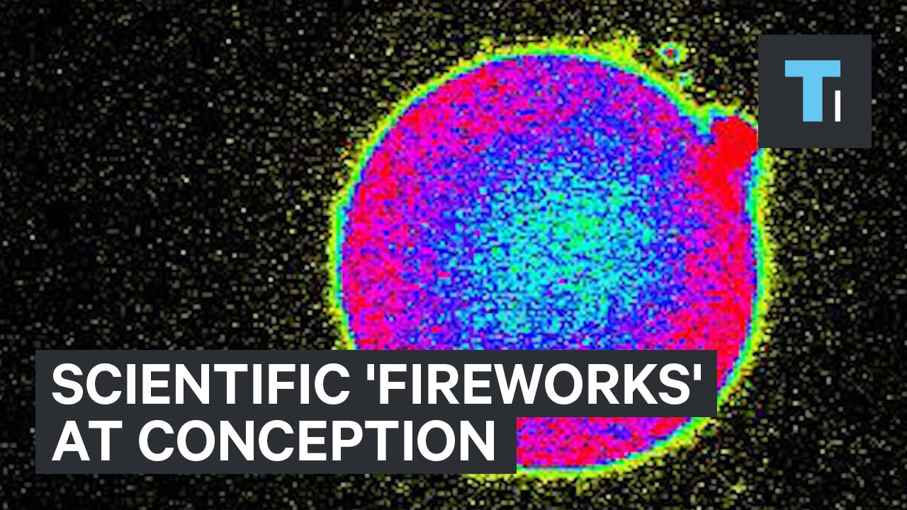 Scientific-fireworks-at-conception