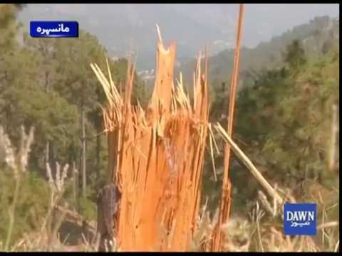 Deforestation In Hazara