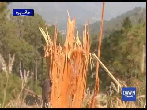 Deforestation In Hazara