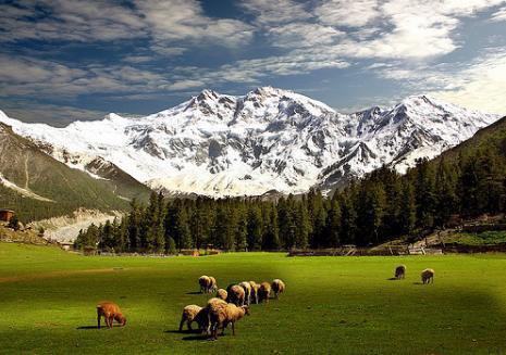 A Glimps Of Fairy Meadows, Nanga Parbat, Deosai, Attabad Lake, Rama Meadows & Lake