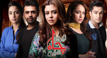 Teri Chah Main – Episode 8, August 31, 2016