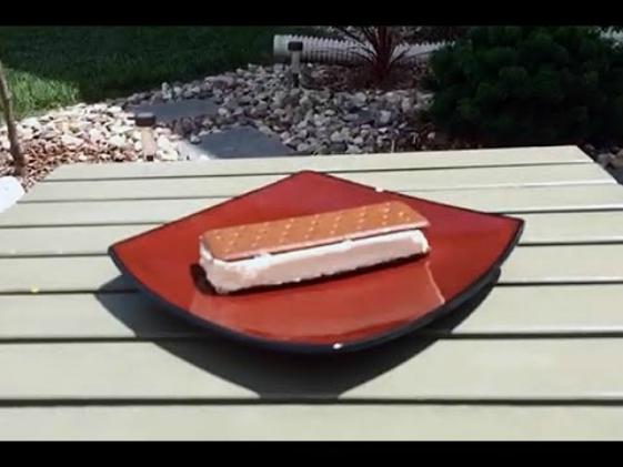 Melting Test Of Walmart's Ice cream Sandwich