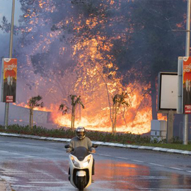 Israel: Tens Of Thousands Flee As Wild Fires Hit Haifa