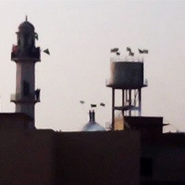 Fear Is In The Air In Chakwal