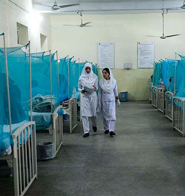 49 Suspected Cases Of 'Chikungunya' In Malir Identified