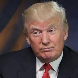 Trump Assembles His Cabinet