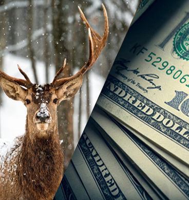 "Why Is A Dollar Called A ""Buck""?"