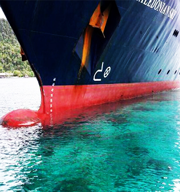 Cruise-Ship-Plows-Into-Pristine-Coral-Reef-NEW