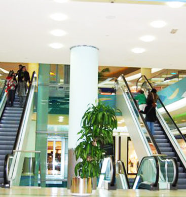 Escalator Plummets, Shoppers Tumble