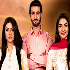 Tumhare Hain – Episode 10, March 27, 2017