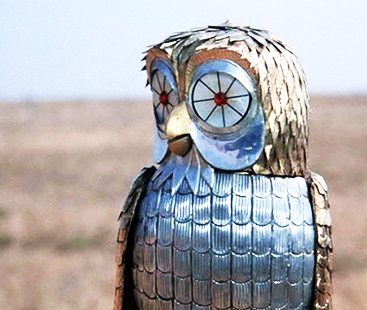 Robotic Birds