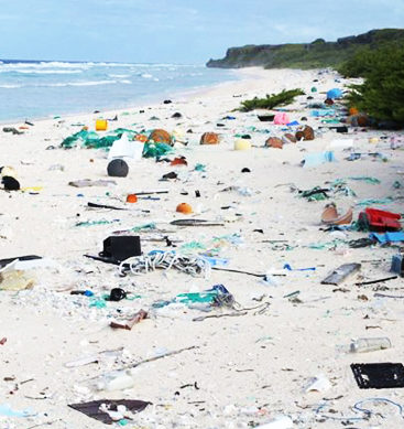 Island's Rubbish Density 'World's Worst'
