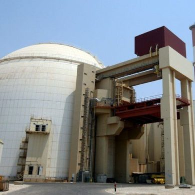 Govt plans to build several new nuclear reactors – official