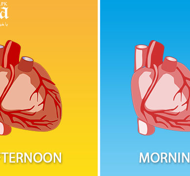 Why it is safer to undergo cardiac surgery in the afternoon than in the morning