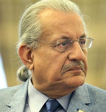 Institutions need to work within constitutional limits: Raza Rabbani