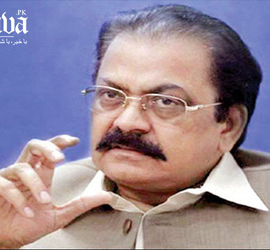 PML-N 'will not yield' to calls for Sana's removal